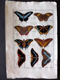 Diderot C1790 Antique Hand Col Print. Butterflies 10